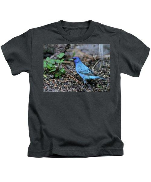 Beautiful Indigo Bunting Kids T-Shirt by Sabrina L Ryan