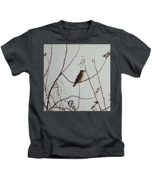 Cedar Wax Wing In Tree Kids T-Shirt by Kenneth Willis