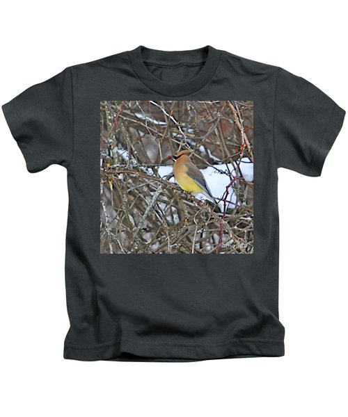 Cedar Wax Wing Kids T-Shirt by Robert Pearson