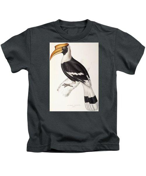 Concave Hornbill Kids T-Shirt by John Gould