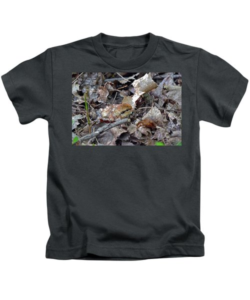 It's A Baby Grouse Kids T-Shirt by Asbed Iskedjian