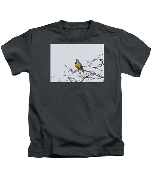 Meadowlark In Tree Kids T-Shirt by Marc Crumpler