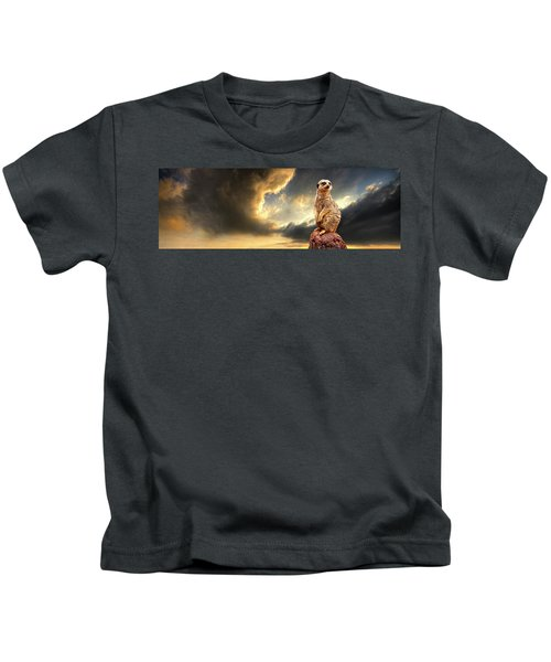 Sentry Duty Kids T-Shirt by Meirion Matthias