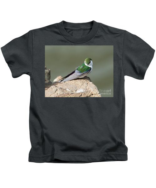 Violet-green Swallow Kids T-Shirt by Mike Dawson