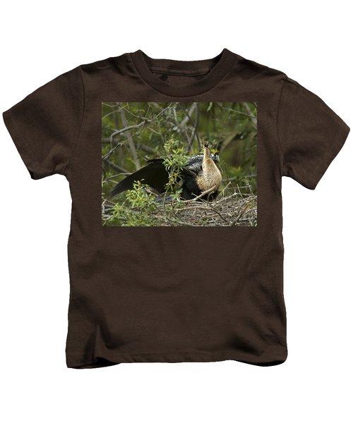 Anhinga Mama Kids T-Shirt by Phill Doherty