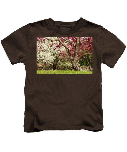 Apple Blossom Colors Kids T-Shirt by Joe Mamer
