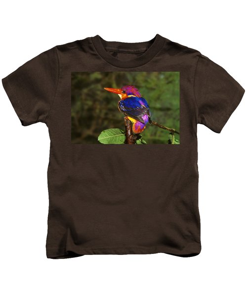 India Three Toed Kingfisher Kids T-Shirt by Anonymous