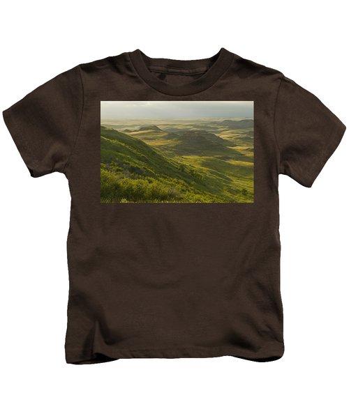 Killdeer Badlands In East Block Of Kids T-Shirt by Dave Reede