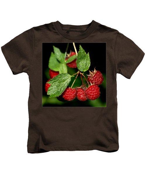 Raspberries Kids T-Shirt by Nikolyn McDonald