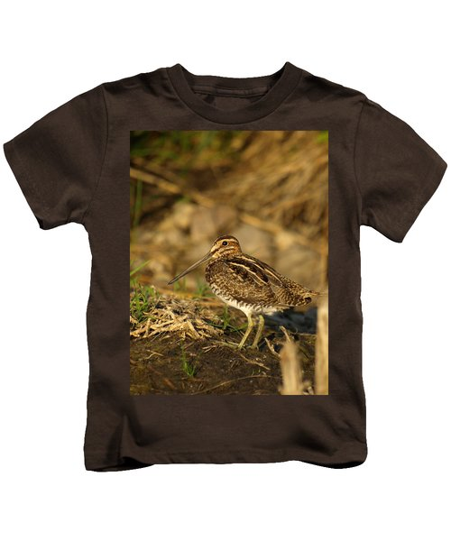 Wilson's Snipe Kids T-Shirt by James Peterson