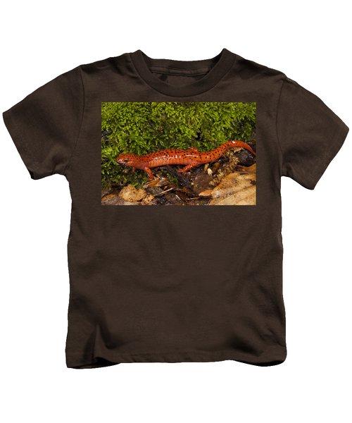 Red Salamander Pseudotriton Ruber Kids T-Shirt by Pete Oxford