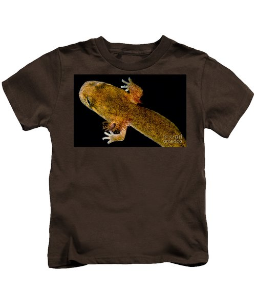 California Giant Salamander Larva Kids T-Shirt by Dant� Fenolio