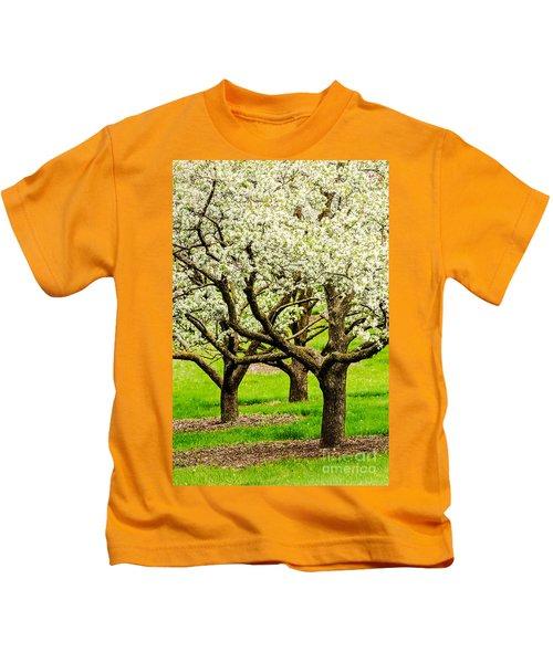 Apple Blossoms Kids T-Shirt by Joe Mamer