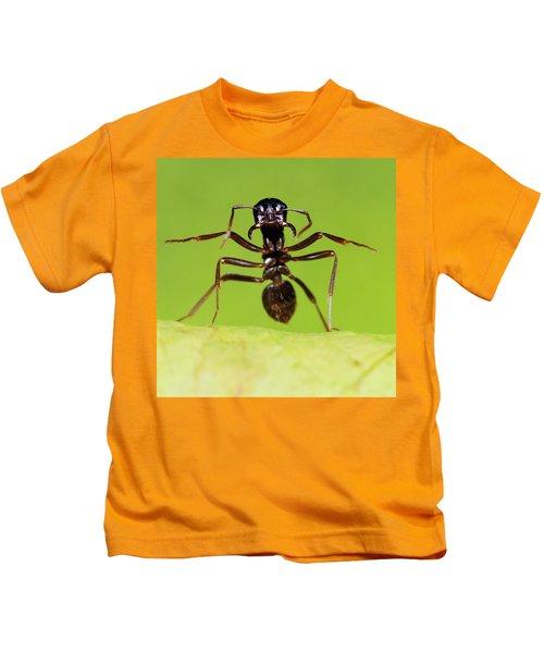 Japanese Slave-making Ant Polyergus Kids T-Shirt by Satoshi Kuribayashi