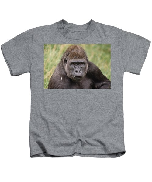 Western Lowland Gorilla Young Male Kids T-Shirt by Gerry Ellis