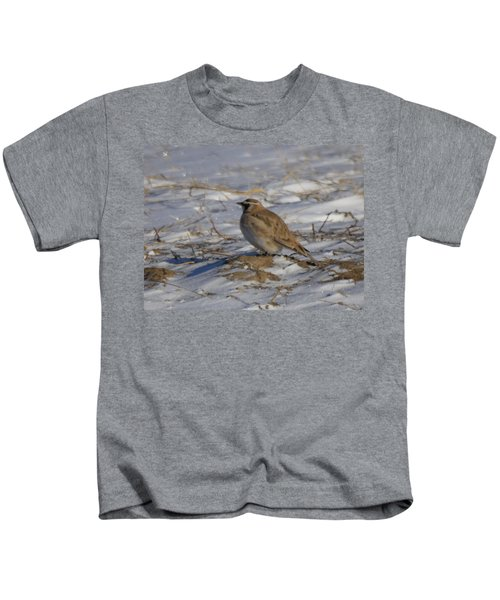 Winter Bird Kids T-Shirt by Jeff Swan