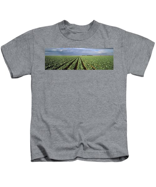 Agriculture - A Field Of Mid Growth Kids T-Shirt by Timothy Hearsum
