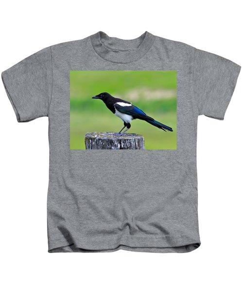 Black Billed Magpie Kids T-Shirt by Karon Melillo DeVega