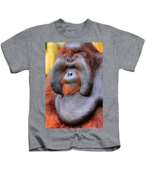 Bornean Orangutan Iv Kids T-Shirt by Lourry Legarde
