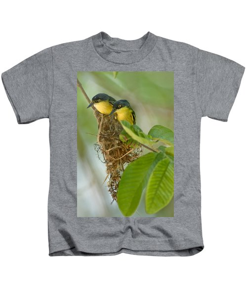Close-up Of Two Common Tody-flycatchers Kids T-Shirt by Panoramic Images