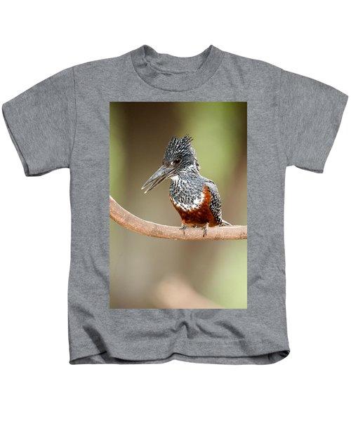 Giant Kingfisher Megaceryle Maxima Kids T-Shirt by Panoramic Images