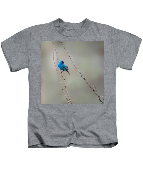 Indigo Bunting Square Kids T-Shirt by Bill Wakeley