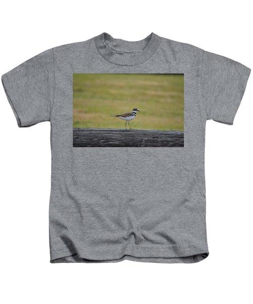 Killdeer Kids T-Shirt by James Petersen