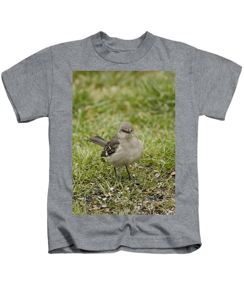 Northern Mockingbird Kids T-Shirt by Heather Applegate
