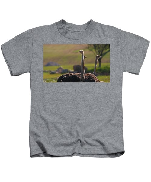 Ostriches Kids T-Shirt by Dan Sproul