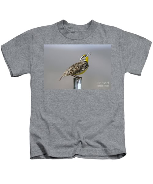 The Meadowlark Sings  Kids T-Shirt by Jeff Swan