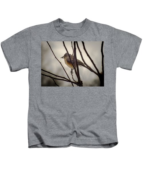 Tufted Titmouse Kids T-Shirt by Karen Wiles
