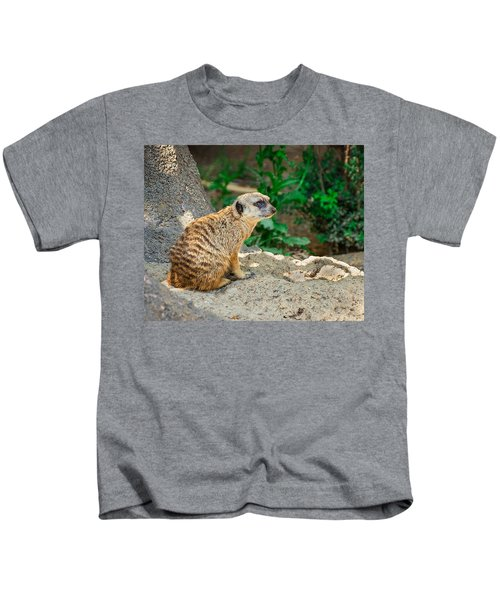 Watchful Meerkat Kids T-Shirt by Jon Woodhams