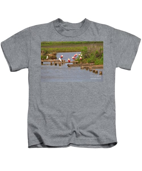 Roseate Spoonbills And Snowy Egrets Kids T-Shirt by Louise Heusinkveld