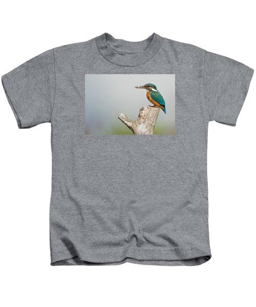 Kingfisher Kids T-Shirt by Paul Neville