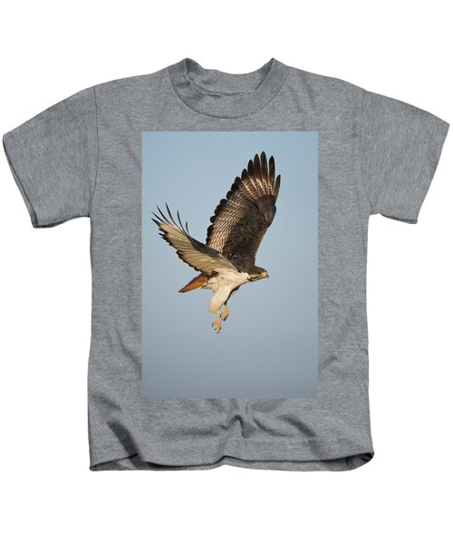 Augur Buzzard Buteo Augur Flying Kids T-Shirt by Panoramic Images