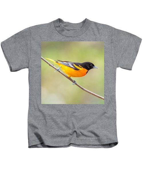 Baltimore Oriole Kids T-Shirt by Paul Freidlund