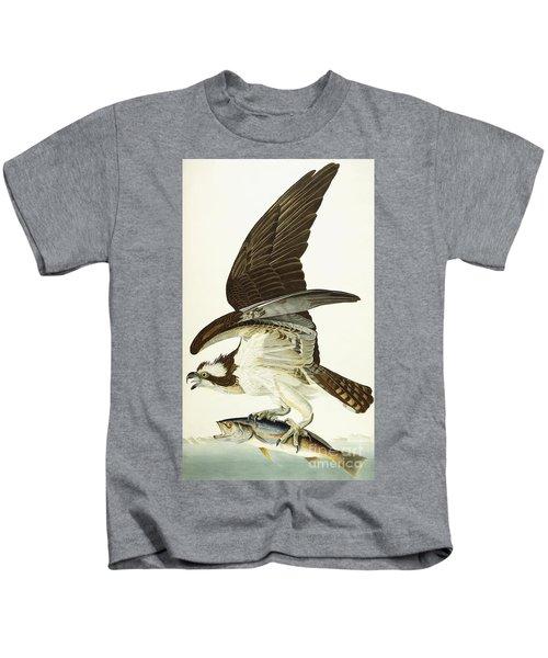 Fish Hawk Kids T-Shirt by John James Audubon