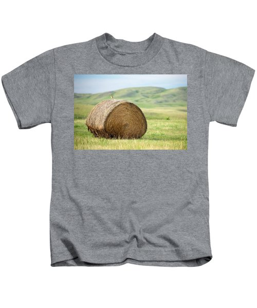 Meadowlark Heaven Kids T-Shirt by Todd Klassy