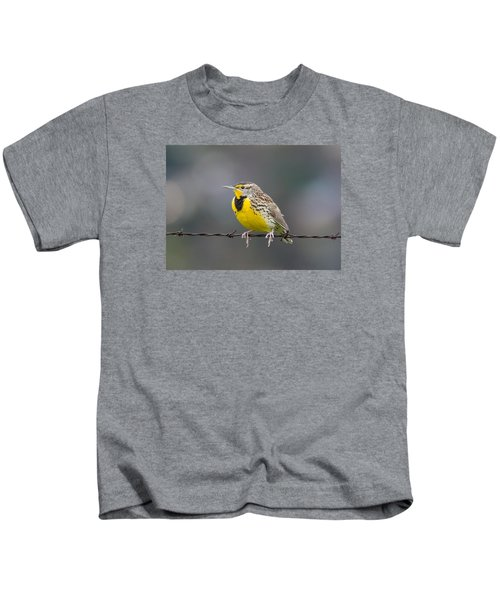 Meadowlark On Barbed Wire Kids T-Shirt by Marc Crumpler