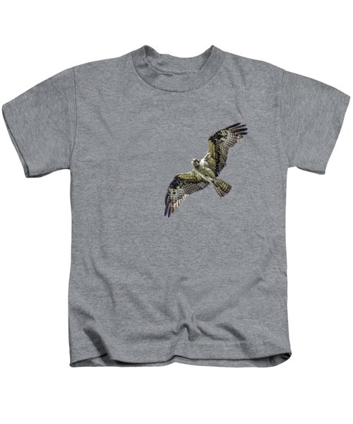 Osprey Overhead Kids T-Shirt by Nick Collins