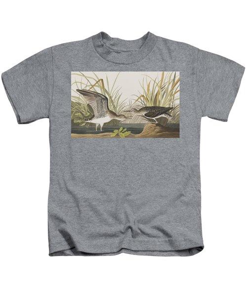 Solitary Sandpiper Kids T-Shirt by John James Audubon