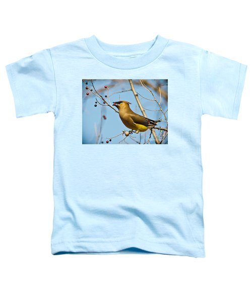 Cedar Waxwing With Berry Toddler T-Shirt by Robert Frederick