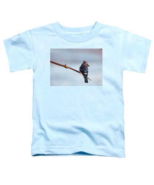 Blue Jay With Nuts Toddler T-Shirt by Everet Regal