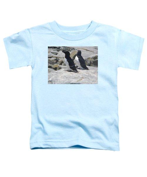 Razorbills 2 Toddler T-Shirt by James Petersen