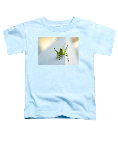 Staring At Me Toddler T-Shirt by Shelby  Young