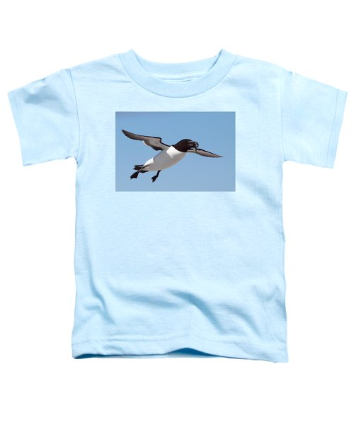 Razorbill In Flight Toddler T-Shirt by Bruce J Robinson