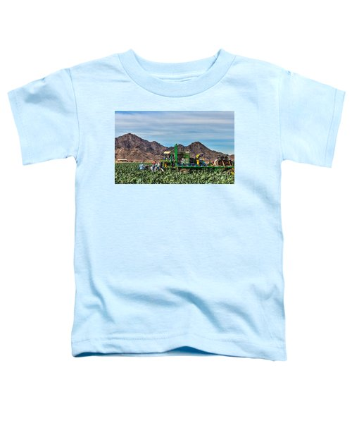 Broccoli Harvest Toddler T-Shirt by Robert Bales