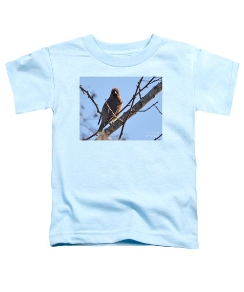 Cedar Wax Wing On The Lookout Toddler T-Shirt by Barbara Dalton