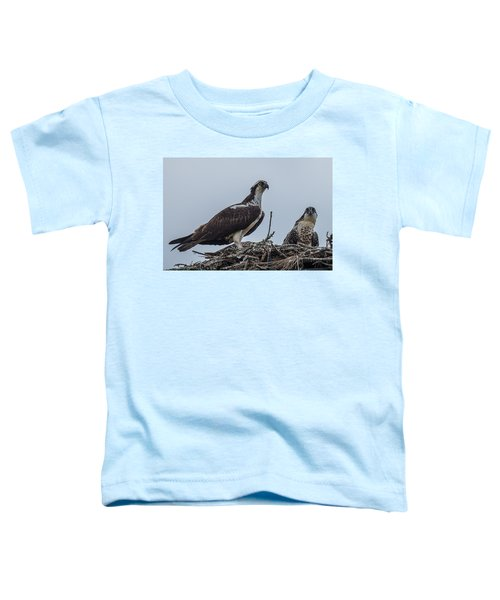 Osprey On A Nest Toddler T-Shirt by Paul Freidlund