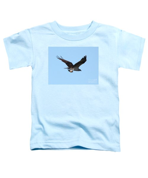 Osprey With Fish Toddler T-Shirt by Carol Groenen